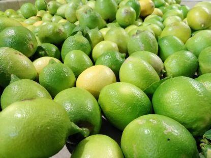 Image de 8 kg Citrons de Sicile