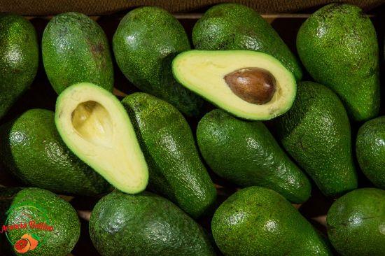 Picture of Avocado BACON coltivato in Sicilia 4kg